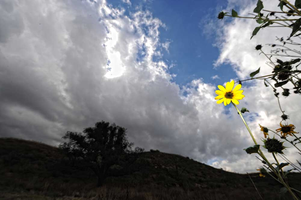 Cloudy skies over Granada Hills Friday, October 22, 2010.  (Hans Gutknecht/Staff Photographer)