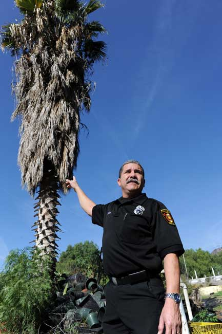 Los Angeles Fire Department Inspector John Novela looks at brush clearance violations at an abandoned property in Lake View Terrace  (Hans Gutknecht/Staff Photographer)